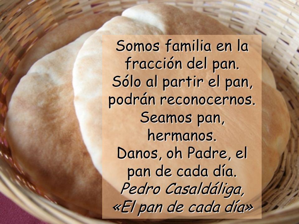 Somos familia en la fracción del pan. Sólo al partir el pan, podrán reconocernos. Seamos pan, hermanos. Danos, oh Padre, el pan de cada día. Pedro Cas