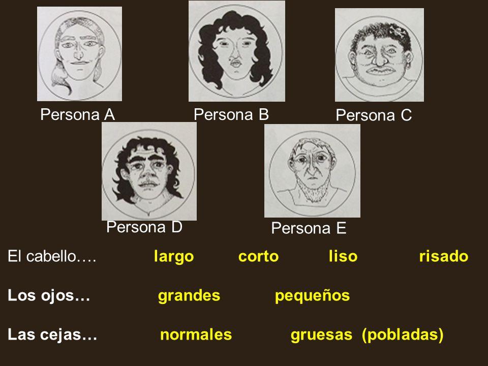 El cabello….largo corto liso risado Los ojos… grandes pequeños Las cejas… normales gruesas (pobladas) Persona APersona B Persona C Persona D Persona E