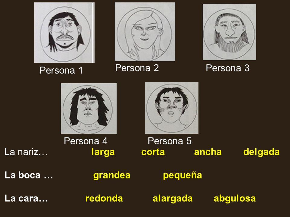 Persona 1 Persona 2 Persona 3 Persona 4Persona 5 La nariz…larga corta ancha delgada La boca … grandea pequeña La cara… redonda alargada abgulosa