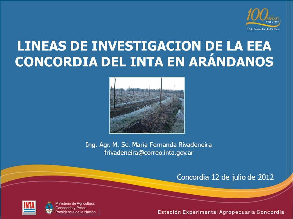 LINEAS DE INVESTIGACION DE LA EEA CONCORDIA DEL INTA EN ARÁNDANOS Concordia 12 de julio de 2012 Ing. Agr. M. Sc. María Fernanda Rivadeneira frivadenei