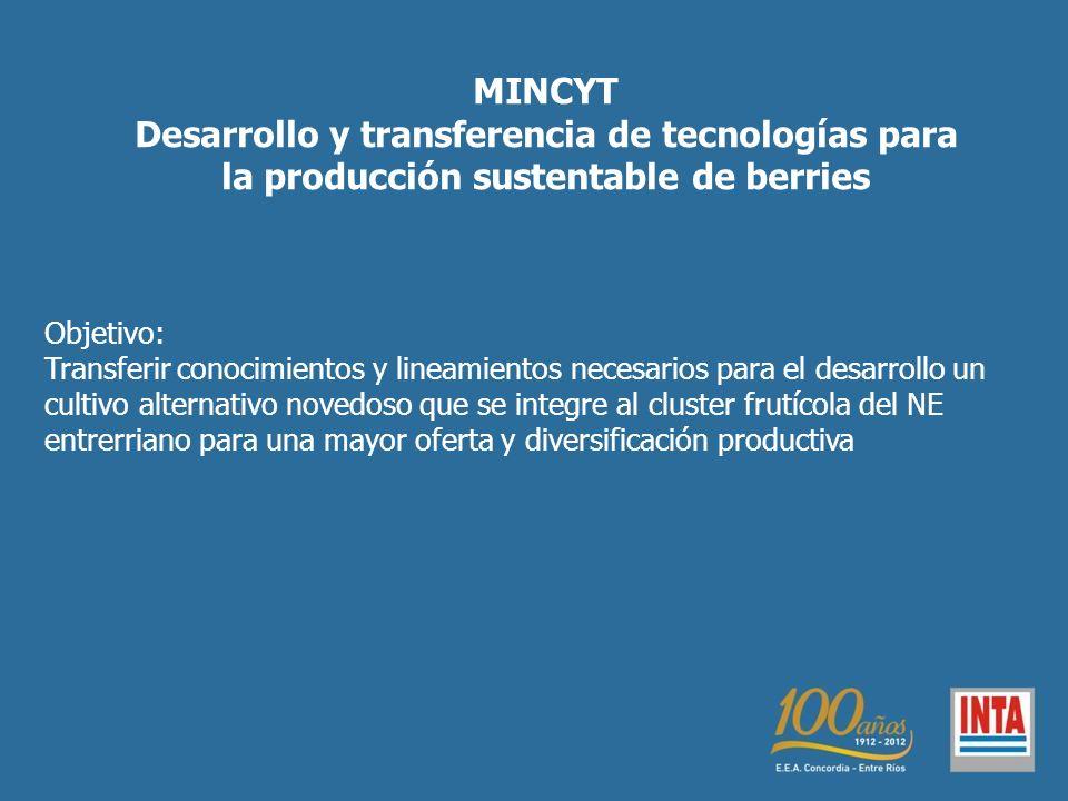 MINCYT Desarrollo y transferencia de tecnologías para la producción sustentable de berries Objetivo: Transferir conocimientos y lineamientos necesario