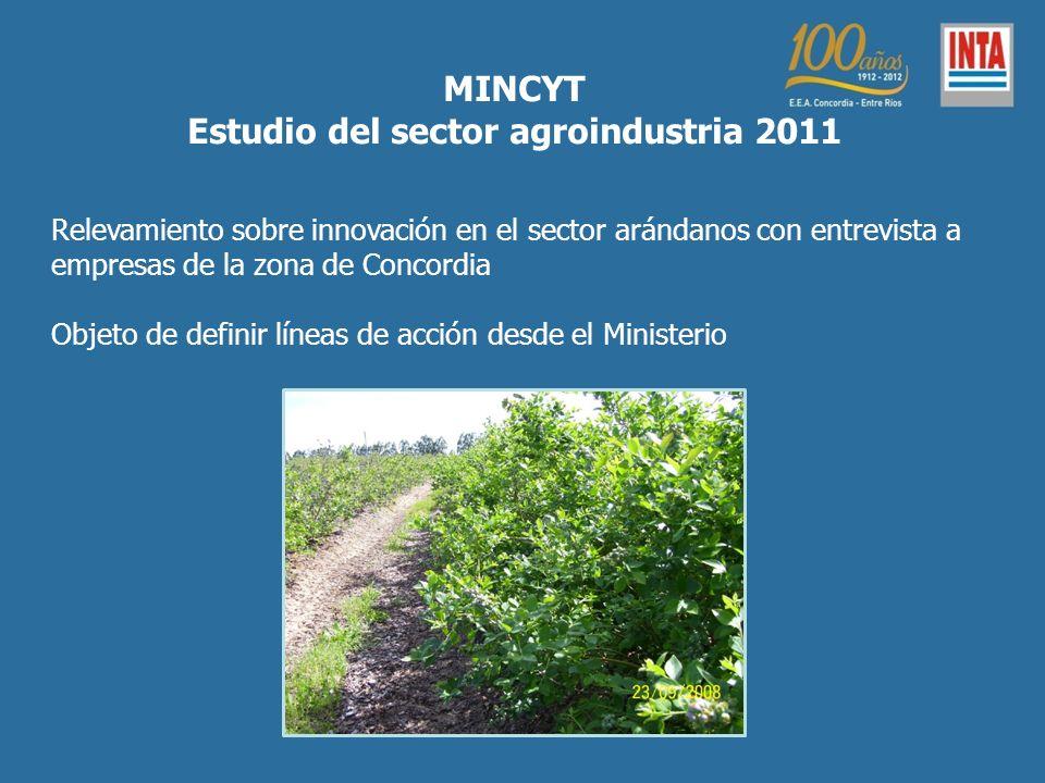 Relevamiento sobre innovación en el sector arándanos con entrevista a empresas de la zona de Concordia Objeto de definir líneas de acción desde el Ministerio MINCYT Estudio del sector agroindustria 2011