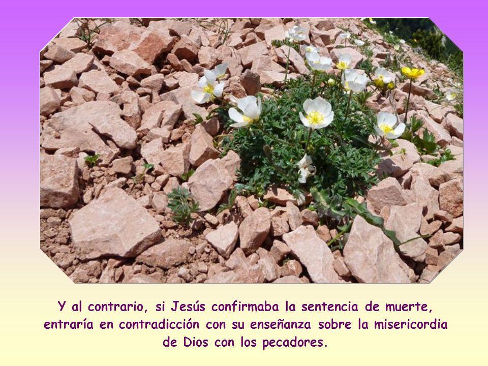 Según la cual los testigos directos de la culpa debían comenzar a lanzar piedras a quien había pecado, seguidos luego por el pueblo.