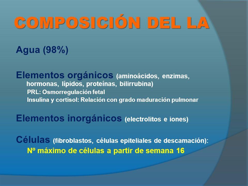 COMPOSICIÓN DEL LA Agua (98%) Elementos orgánicos (aminoácidos, enzimas, hormonas, lípidos, proteínas, bilirrubina) PRL: Osmorregulación fetal Insulina y cortisol: Relación con grado maduración pulmonar Elementos inorgánicos (electrolitos e iones) Células (fibroblastos, células epiteliales de descamación): Nº máximo de células a partir de semana 16