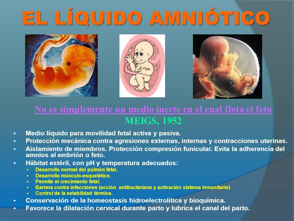 1-8 semanas: Trasudado materno.8-18 semanas: Trasudado a través de ls piel fetal no queratinizada.