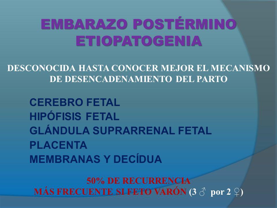 EMBARAZO POSTÉRMINO ETIOPATOGENIA CEREBRO FETAL HIPÓFISIS FETAL GLÁNDULA SUPRARRENAL FETAL PLACENTA MEMBRANAS Y DECÍDUA DESCONOCIDA HASTA CONOCER MEJOR EL MECANISMO DE DESENCADENAMIENTO DEL PARTO 50% DE RECURRENCIA MÁS FRECUENTE SI FETO VARÓN (3 por 2 )