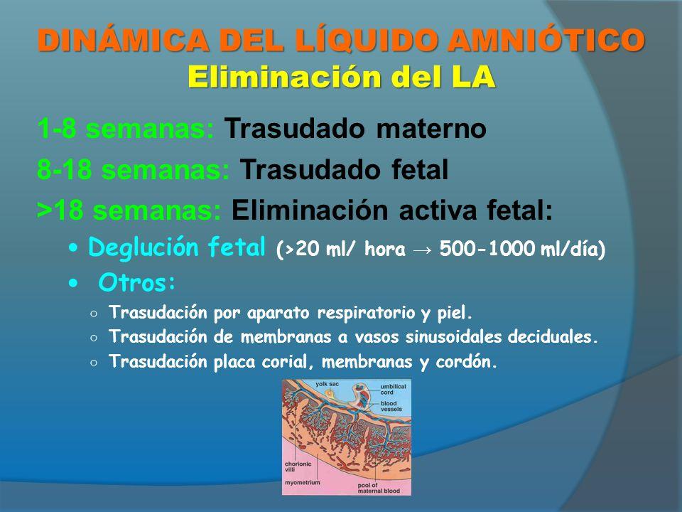 APLICACIONES CLÍNICAS DEL LA AMNIOCENTESIS: Obtención de muestra: Detección prenatal de anomalías congénitas (cariotipo, α-FP) Determinación de madurez pulmonar Concentración de bilirrubina (isoinmunización Rh) Estudio de infecciones intrauterinas ESTUDIO INDIRECTO DE SUS CARACTERÍSTICAS: ESTIMACIÓN ECOGRÁFICA DEL VOLUMEN.