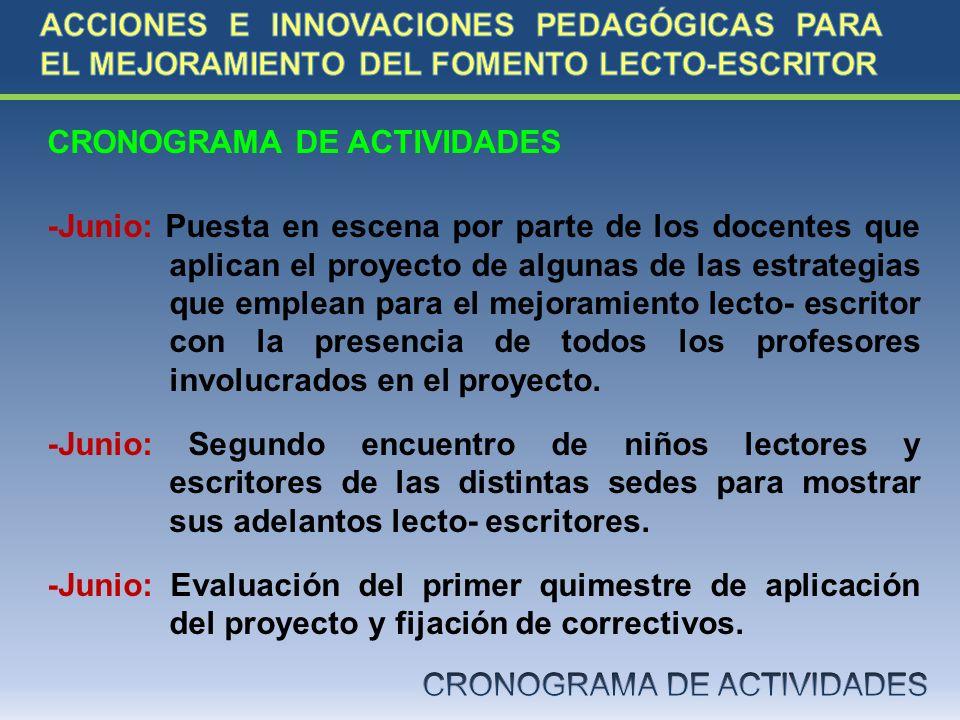CRONOGRAMA DE ACTIVIDADES -Junio: Puesta en escena por parte de los docentes que aplican el proyecto de algunas de las estrategias que emplean para el