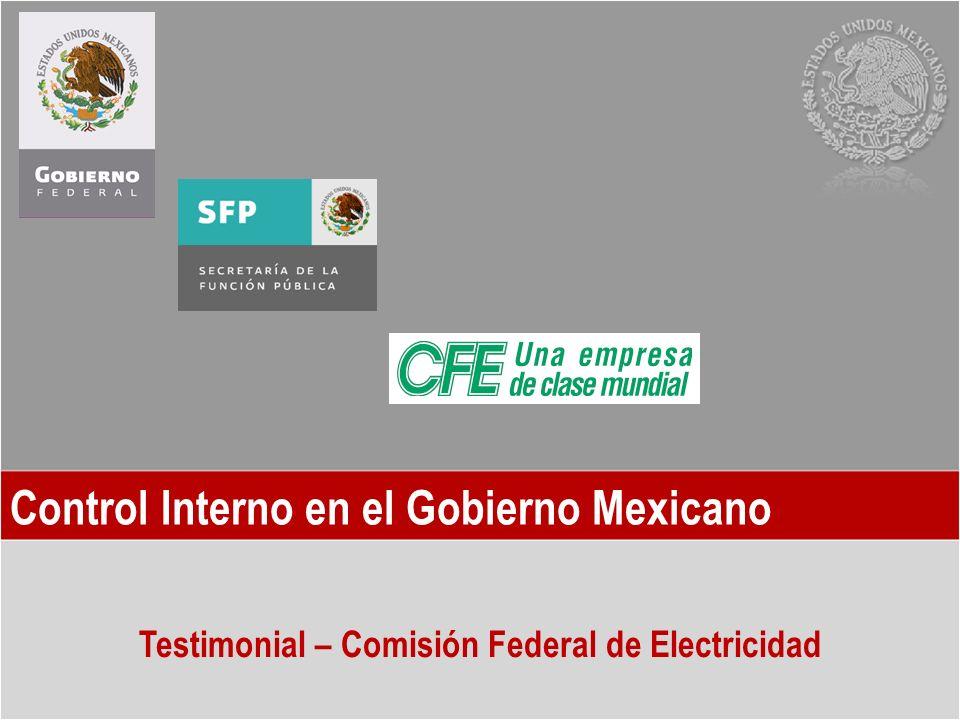 Control Interno en el Gobierno Mexicano Testimonial – Comisión Federal de Electricidad