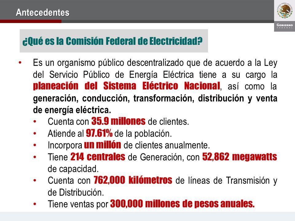 Es un organismo público descentralizado que de acuerdo a la Ley del Servicio Público de Energía Eléctrica tiene a su cargo la planeación del Sistema Eléctrico Nacional, así como la generación, conducción, transformación, distribución y venta de energía eléctrica.