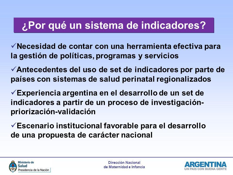 Dirección Nacional de Maternidad e Infancia ¿Por qué un sistema de indicadores.