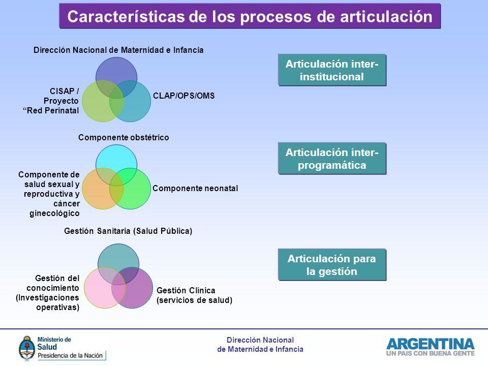 Dirección Nacional de Maternidad e Infancia Características de los procesos de articulación Dirección Nacional de Maternidad e Infancia CISAP / Proyec