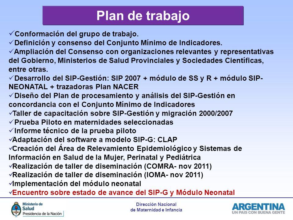 Dirección Nacional de Maternidad e Infancia Plan de trabajo Conformación del grupo de trabajo.