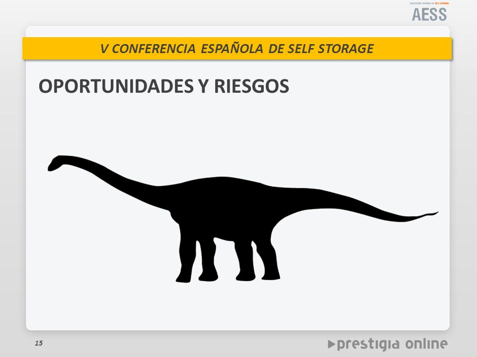 V CONFERENCIA ESPAÑOLA DE SELF STORAGE 15 OPORTUNIDADES Y RIESGOS