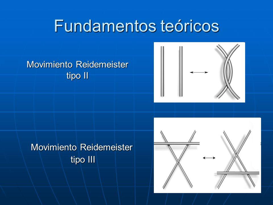 Fundamentos teóricos Movimiento Reidemeister tipo III tipo III Movimiento Reidemeister tipo II