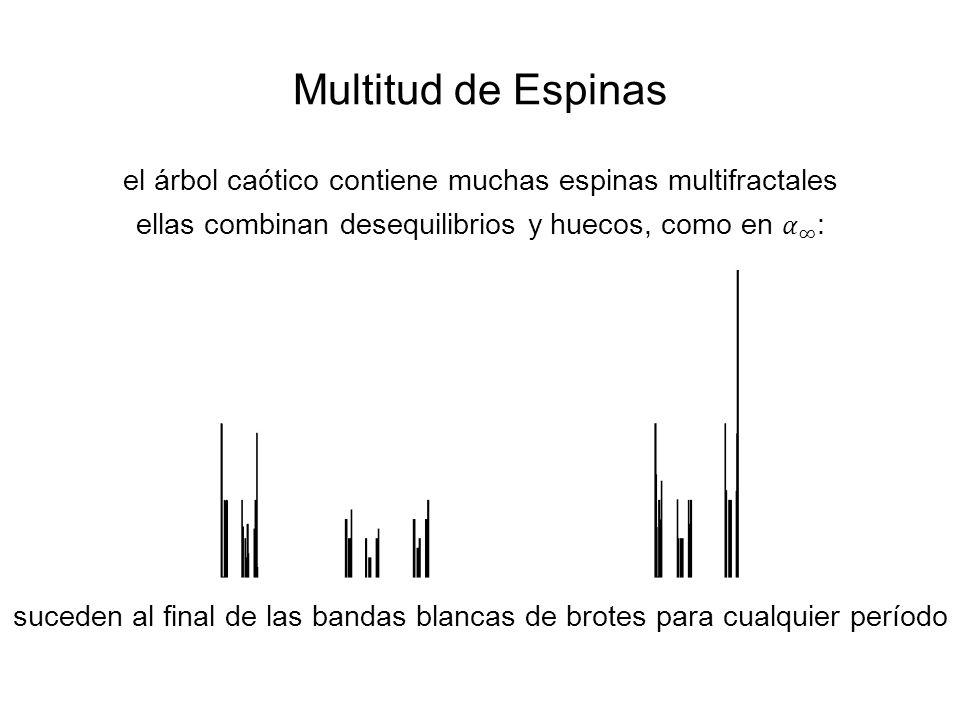 Multitud de Espinas suceden al final de las bandas blancas de brotes para cualquier período