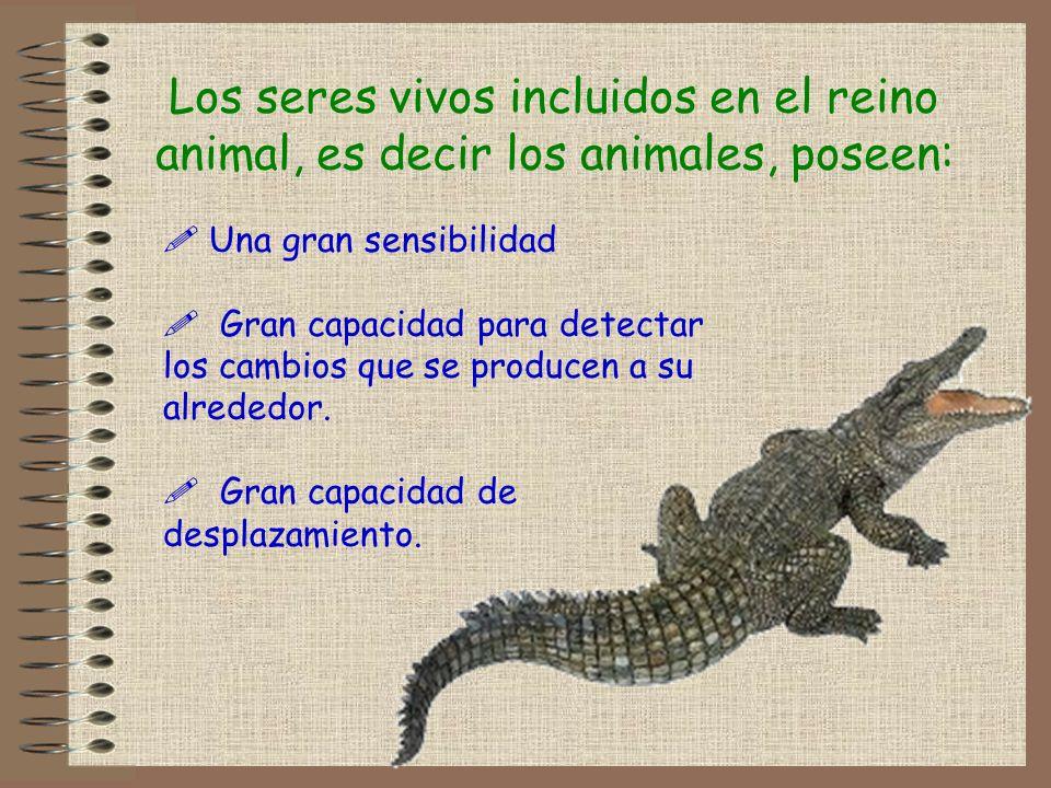 Los seres vivos incluidos en el reino animal, es decir los animales, poseen: Una gran sensibilidad Gran capacidad para detectar los cambios que se pro