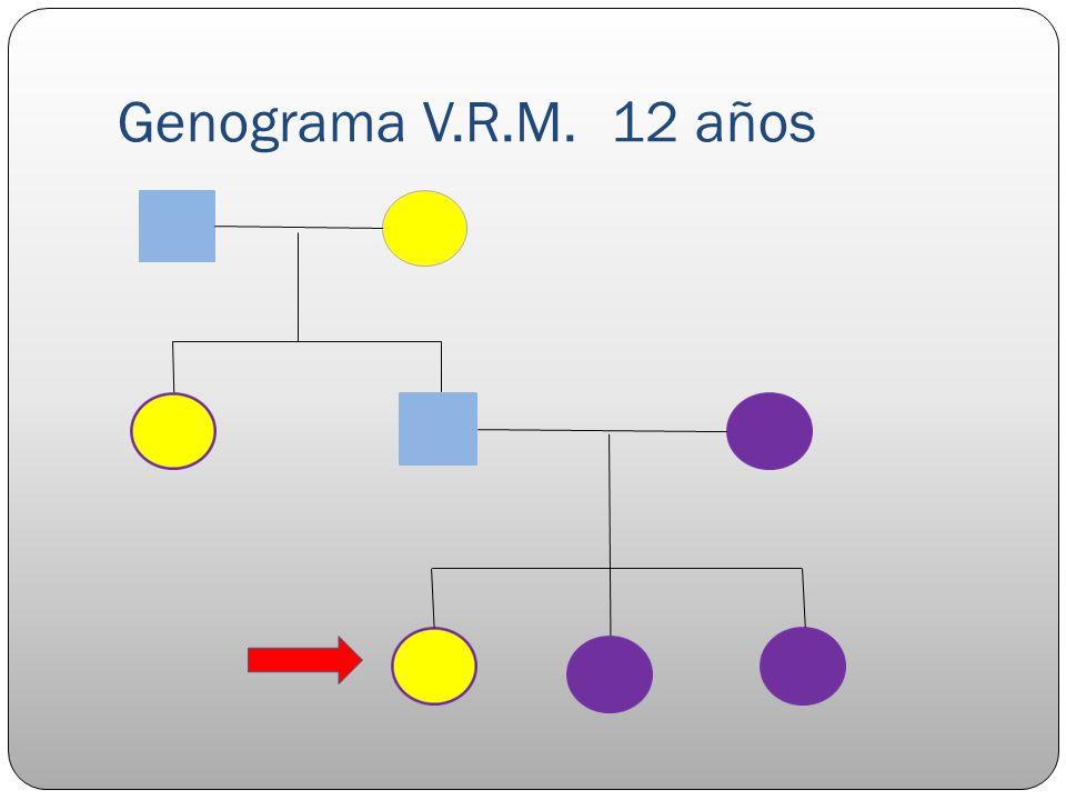 Genograma V.R.M. 12 años