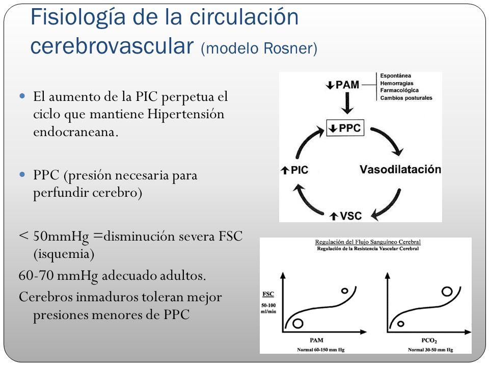 Fisiología de la circulación cerebrovascular (modelo Rosner) El aumento de la PIC perpetua el ciclo que mantiene Hipertensión endocraneana. PPC (presi