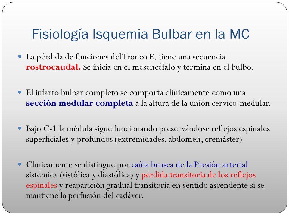 Fisiología Isquemia Bulbar en la MC La pérdida de funciones del Tronco E. tiene una secuencia rostrocaudal. Se inicia en el mesencéfalo y termina en e