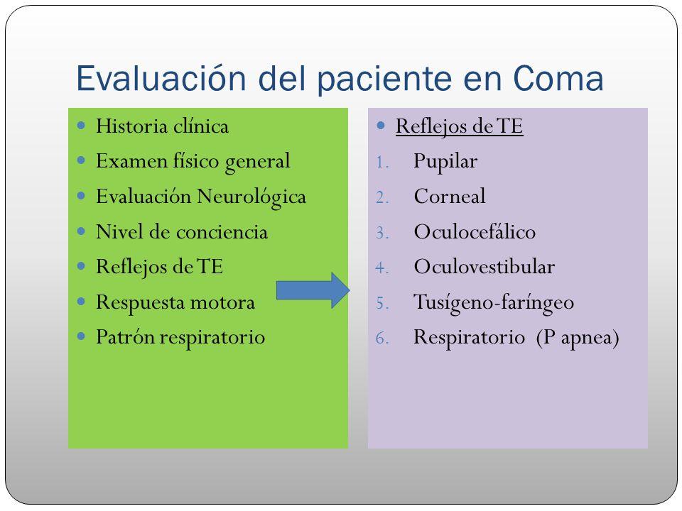 Evaluación del paciente en Coma Historia clínica Examen físico general Evaluación Neurológica Nivel de conciencia Reflejos de TE Respuesta motora Patr