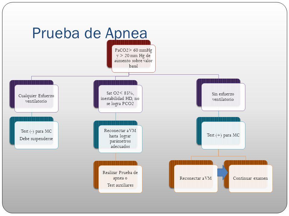 Prueba de Apnea PaCO2> 60 mmHg y > 20 mm Hg de aumento sobre valor basal Cualquier Esfuerzo ventilatorio Test (-) para MC Debe suspenderse Sat O2< 85%