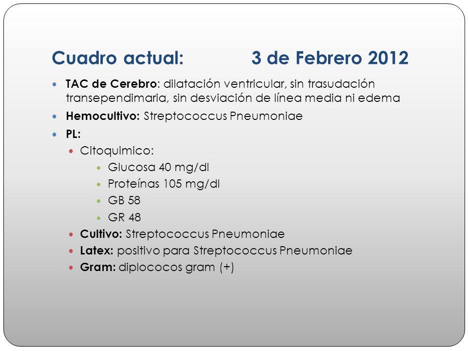 Cuadro actual: 3 de Febrero 2012 TAC de Cerebro : dilatación ventricular, sin trasudación transependimaria, sin desviación de línea media ni edema Hem