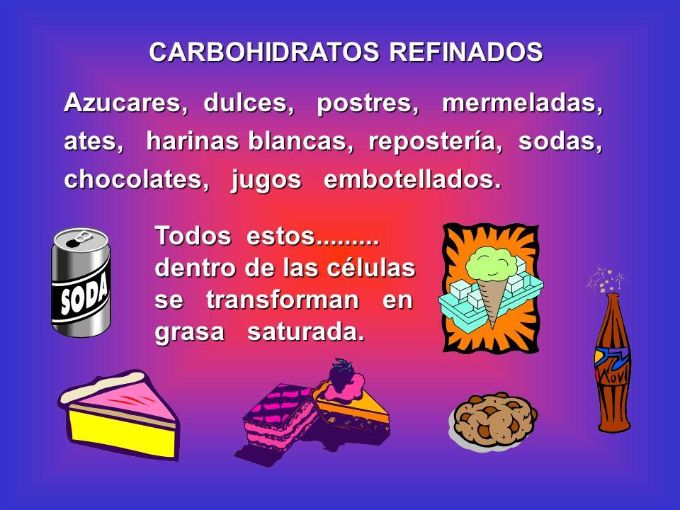 Azucares, dulces, postres, mermeladas, ates, harinas blancas, repostería, sodas, chocolates, jugos embotellados. CARBOHIDRATOS REFINADOS Todos estos..