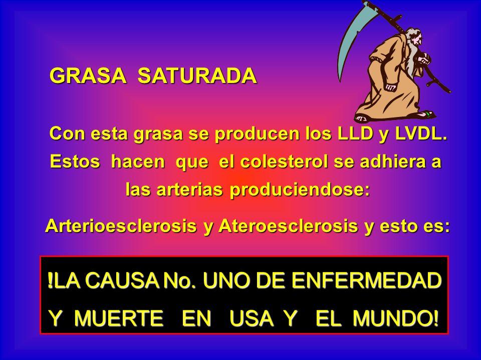GRASA SATURADA Con esta grasa se producen los LLD y LVDL. Estos hacen que el colesterol se adhiera a las arterias produciendose: Arterioesclerosis y A