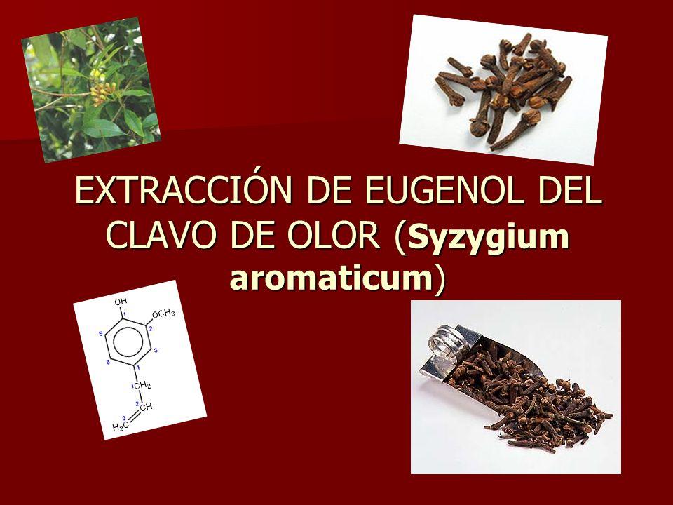EXTRACCIÓN DE EUGENOL DEL CLAVO DE OLOR ( Syzygium aromaticum)
