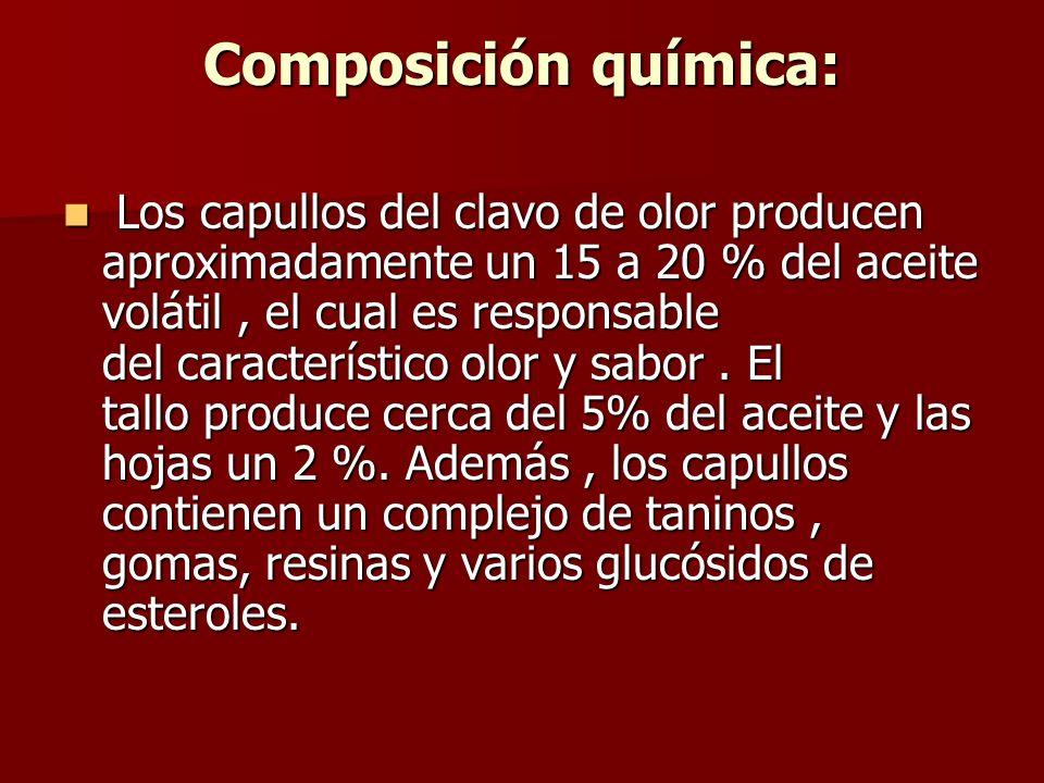 COMPOSICIÓN QUÍMICA Aceite volátil ( 15 a 21 % ) Aceite volátil ( 15 a 21 % ) * Eugenol ( 4 – alil – 2 – metoxifenol ) (70 – 90 % ) (principal compuesto) * Eugenol ( 4 – alil – 2 – metoxifenol ) (70 – 90 % ) (principal compuesto) *Acetato de eugenol ( acetileugenol, en más de un 17 % ) *Acetato de eugenol ( acetileugenol, en más de un 17 % ) *Beta – cariofileno y su óxido( 5 – 12 % ) *Beta – cariofileno y su óxido( 5 – 12 % ) *Alfa humuleno y su epóxido *Alfa humuleno y su epóxido *Acidos fenólico – carboxílicos : ácido gálico *Acidos fenólico – carboxílicos : ácido gálico