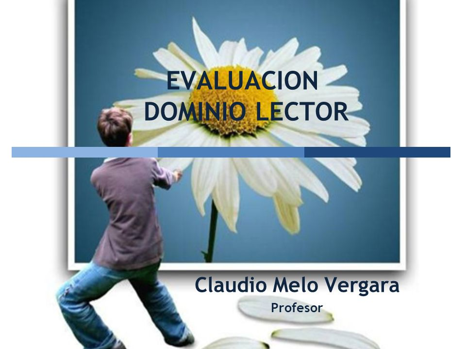 EVALUACION DOMINIO LECTOR Claudio Melo Vergara Profesor www.claudiomelo.cl