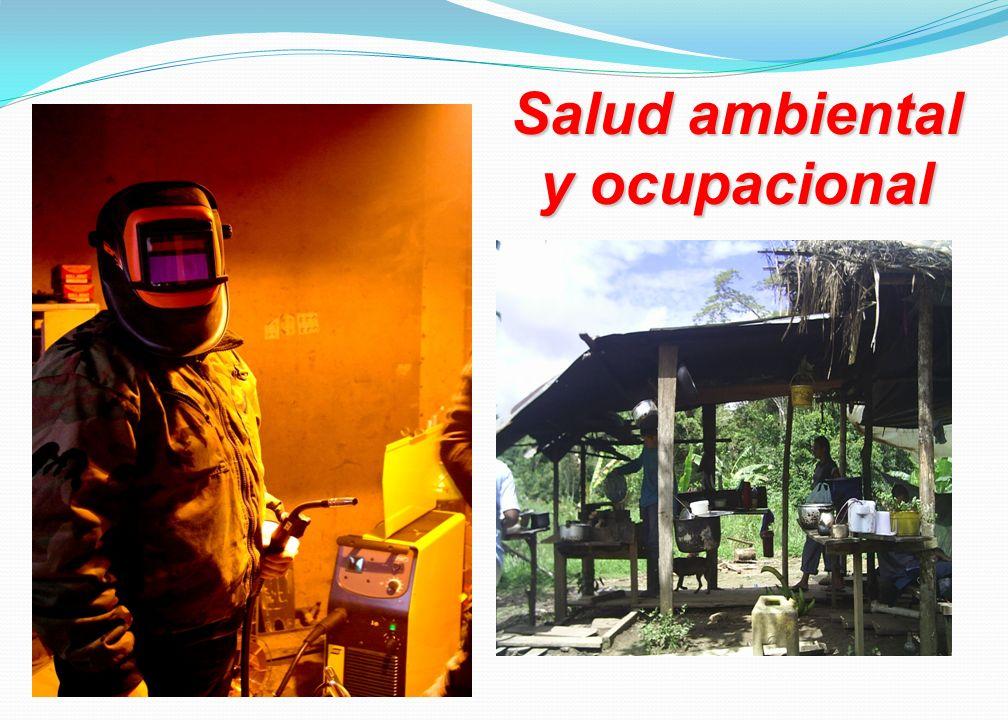 Salud ambiental y ocupacional