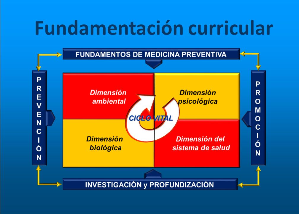 Fundamentación curricular