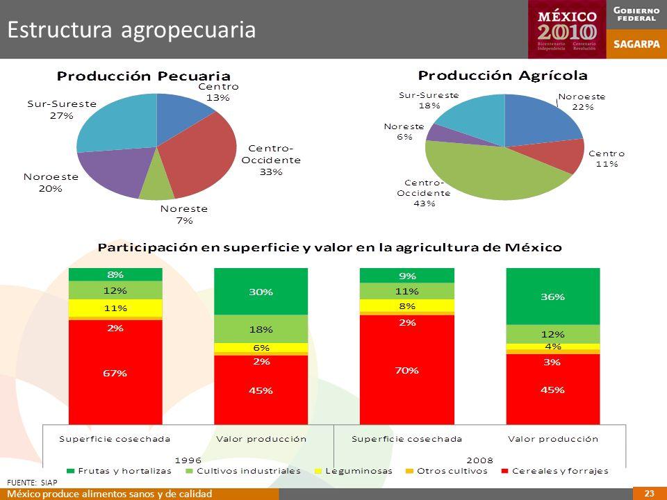 Estructura agropecuaria FUENTE: SIAP 23 México produce alimentos sanos y de calidad