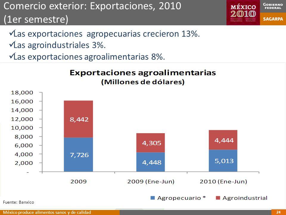 Comercio exterior: Exportaciones, 2010 (1er semestre) 24 Las exportaciones agropecuarias crecieron 13%.