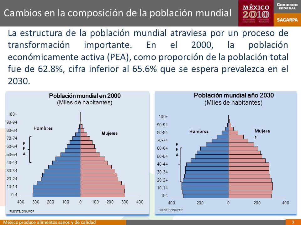 34 Propiedad privada con uso agrícola México produce alimentos sanos y de calidad