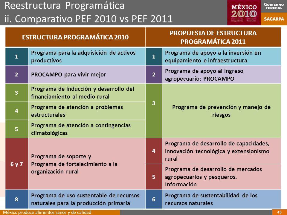 Reestructura Programática ii.