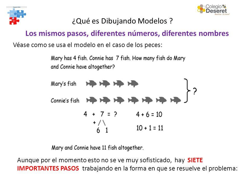 Los mismos pasos, diferentes números, diferentes nombres Véase como se usa el modelo en el caso de los peces: Aunque por el momento esto no se ve muy sofisticado, hay SIETE IMPORTANTES PASOS trabajando en la forma en que se resuelve el problema: ¿Qué es Dibujando Modelos ?