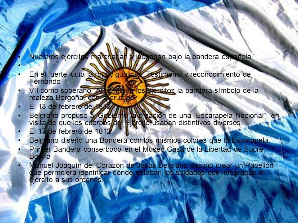 Nuestros ejércitos marchaban y luchaban bajo la bandera española..