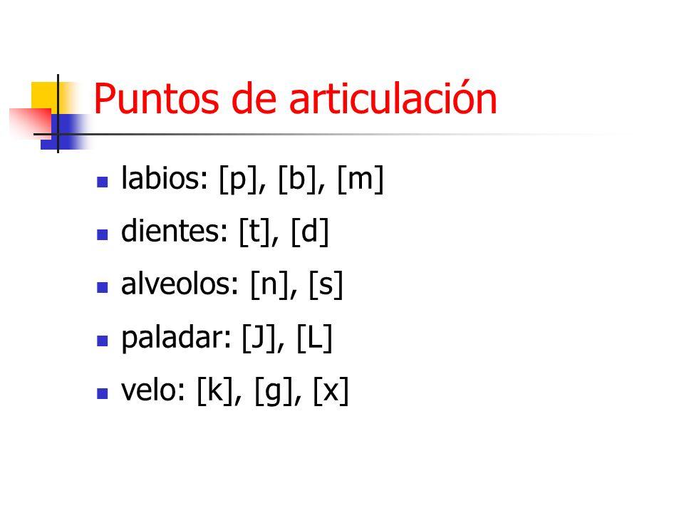 Puntos de articulación labios: [p], [b], [m] dientes: [t], [d] alveolos: [n], [s] paladar: [J], [L] velo: [k], [g], [x]