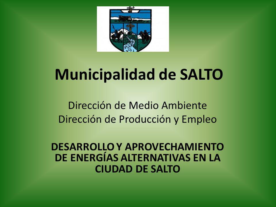 Municipalidad de SALTO Dirección de Medio Ambiente Dirección de Producción y Empleo DESARROLLO Y APROVECHAMIENTO DE ENERGÍAS ALTERNATIVAS EN LA CIUDAD