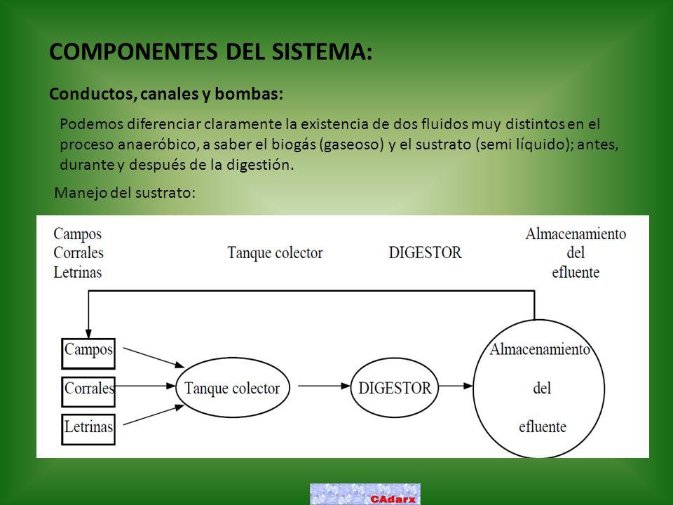 COMPONENTES DEL SISTEMA: Conductos, canales y bombas: Podemos diferenciar claramente la existencia de dos fluidos muy distintos en el proceso anaeróbi