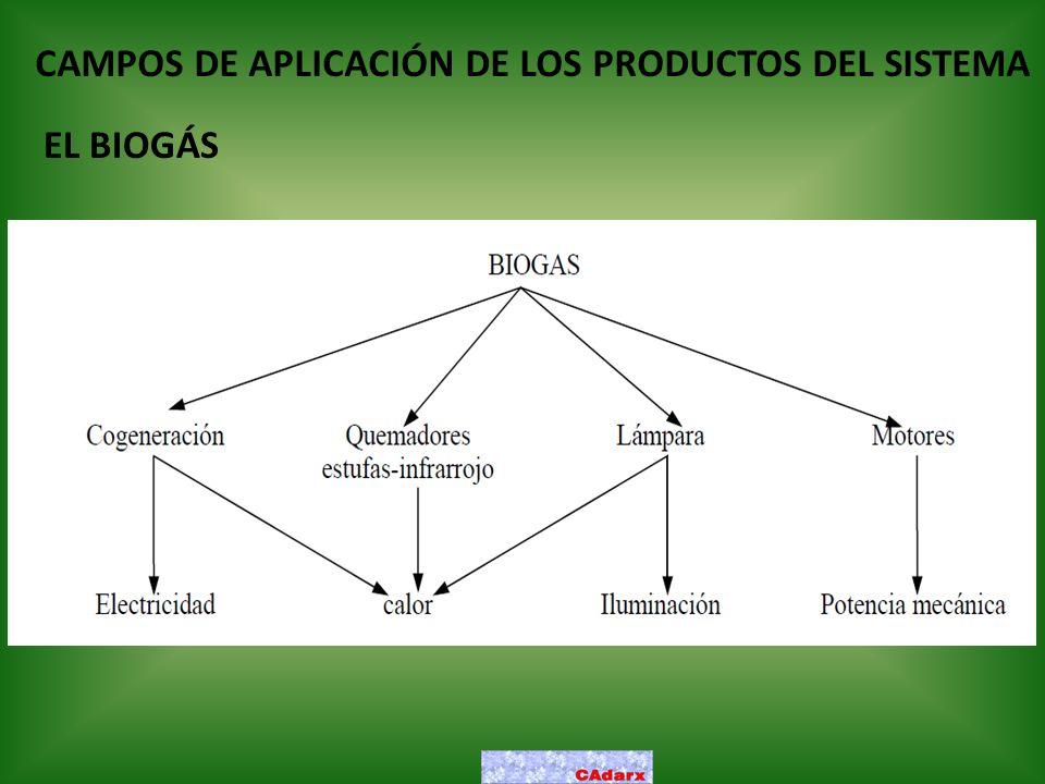 CAMPOS DE APLICACIÓN DE LOS PRODUCTOS DEL SISTEMA EL BIOGÁS