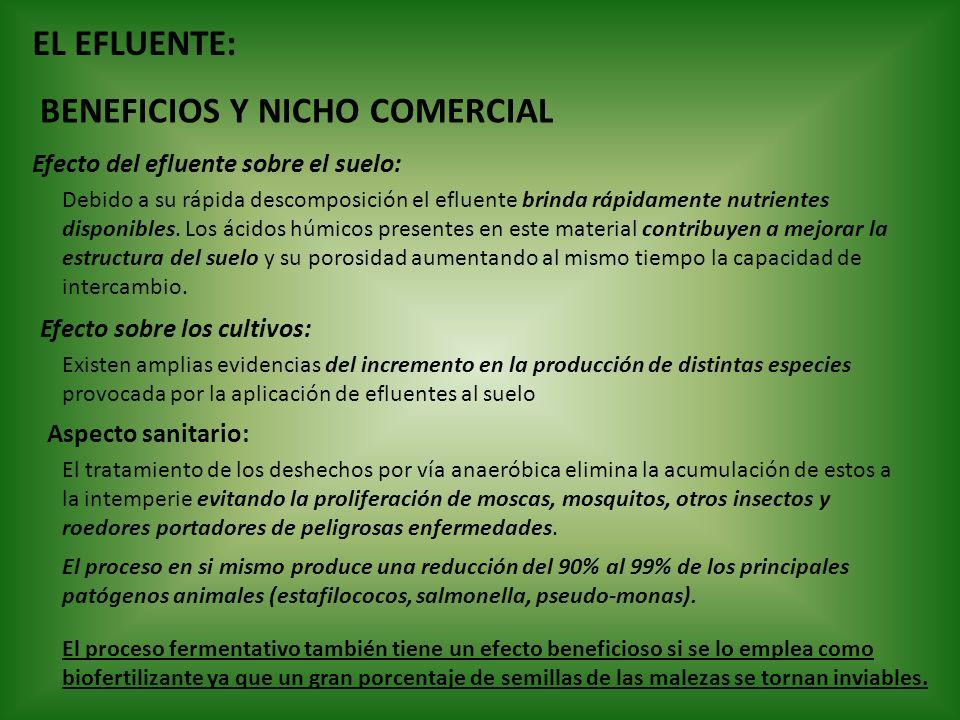 EL EFLUENTE: BENEFICIOS Y NICHO COMERCIAL Efecto del efluente sobre el suelo: Debido a su rápida descomposición el efluente brinda rápidamente nutrien