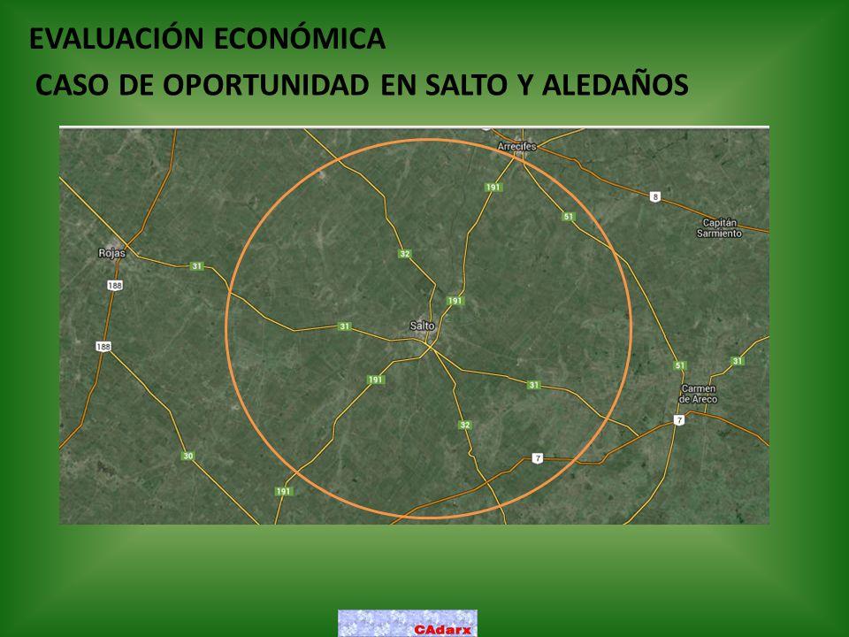 EVALUACIÓN ECONÓMICA CASO DE OPORTUNIDAD EN SALTO Y ALEDAÑOS