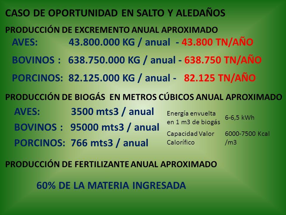 CASO DE OPORTUNIDAD EN SALTO Y ALEDAÑOS AVES: 3500 mts3 / anual BOVINOS : 95000 mts3 / anual PORCINOS: 766 mts3 / anual PRODUCCIÓN DE BIOGÁS EN METROS