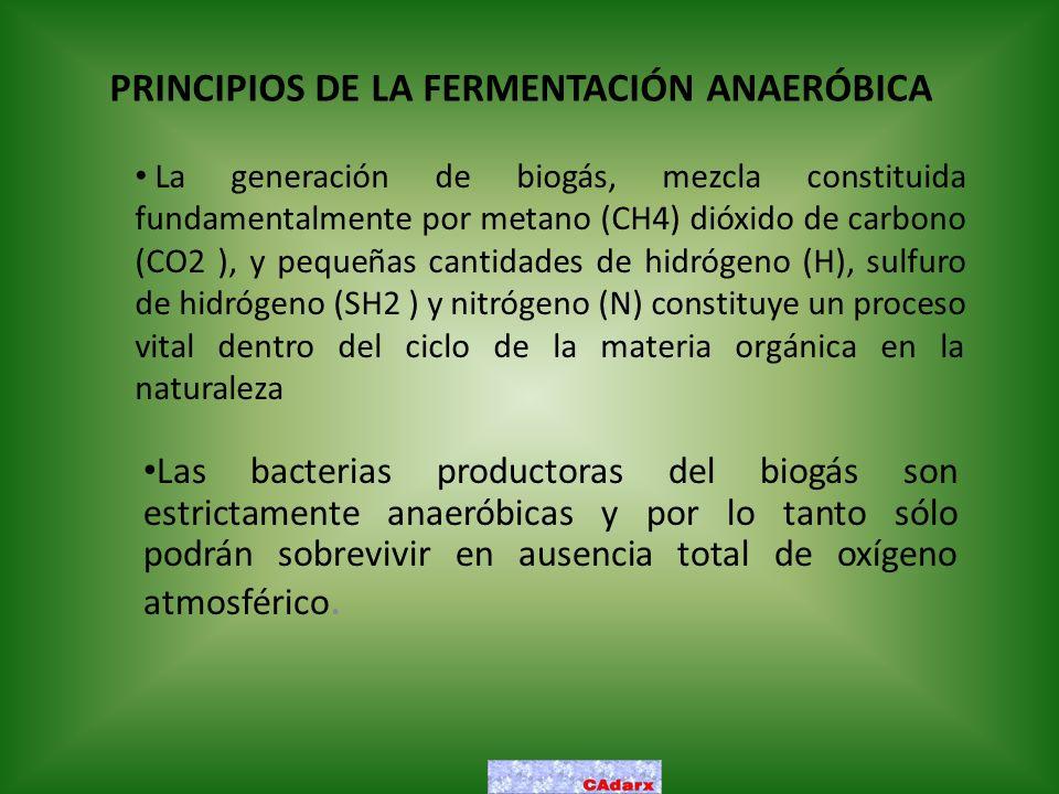 PRINCIPIOS DE LA FERMENTACIÓN ANAERÓBICA Las bacterias productoras del biogás son estrictamente anaeróbicas y por lo tanto sólo podrán sobrevivir en a