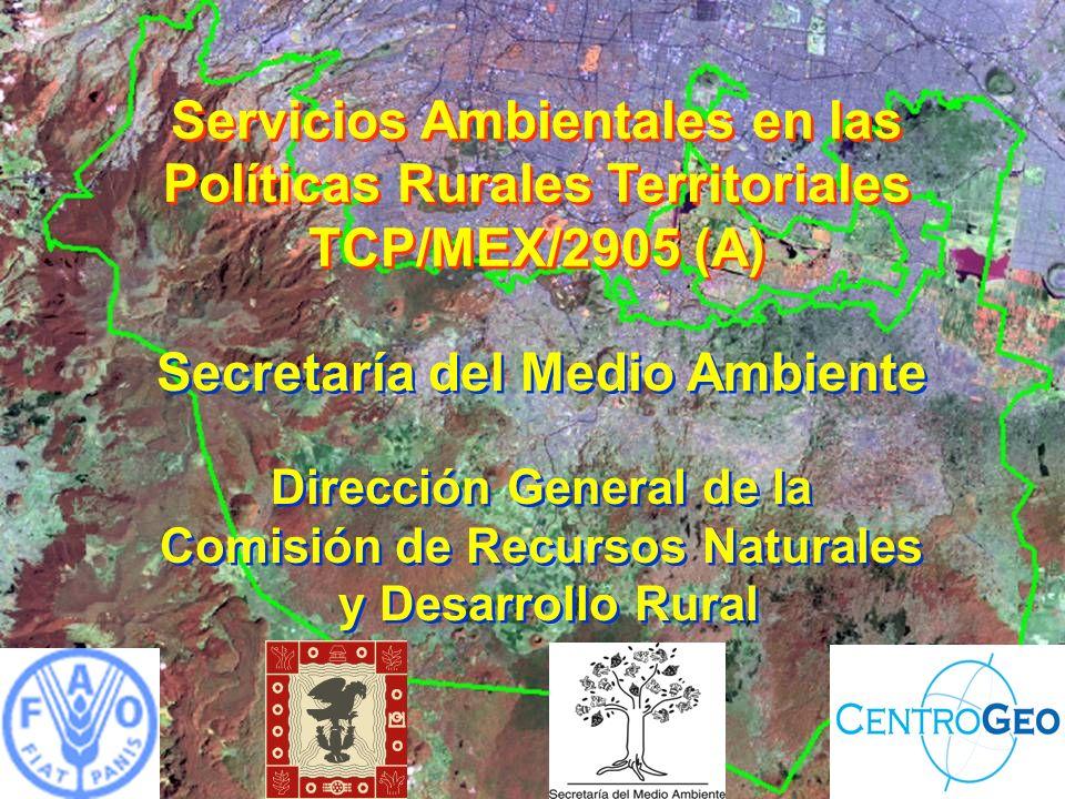 Servicios Ambientales en las Políticas Rurales Territoriales TCP/MEX/2905 (A) Secretaría del Medio Ambiente Dirección General de la Comisión de Recursos Naturales y Desarrollo Rural Secretaría del Medio Ambiente Dirección General de la Comisión de Recursos Naturales y Desarrollo Rural