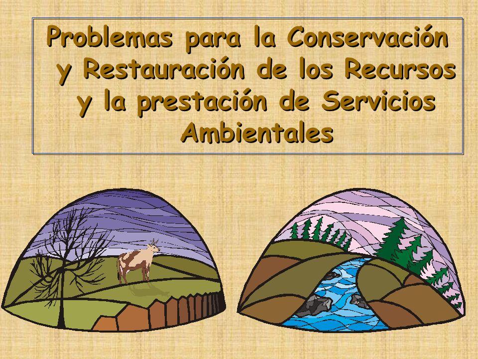 Problemas para la Conservación y Restauración de los Recursos y la prestación de Servicios Ambientales